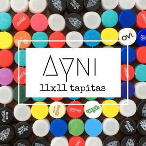 ayna (1)