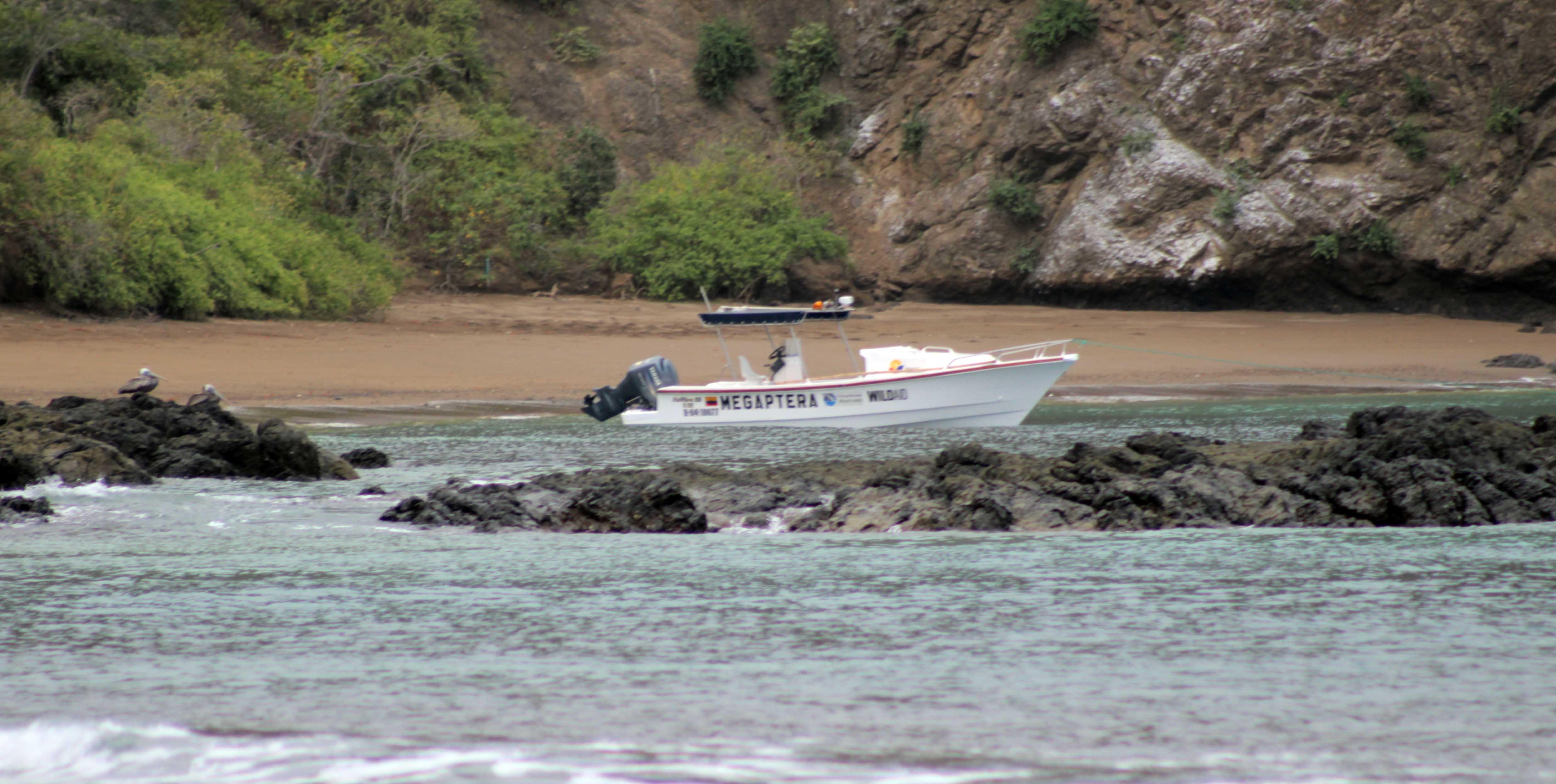 La embarcación Megáptera al pie de la Isla de la Plata.