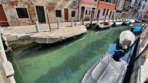 La claridad y tranquilidad de los canales de Venecia están siendo poblados nuevamente por la especies marinas. (Foto: La Vanguardia)